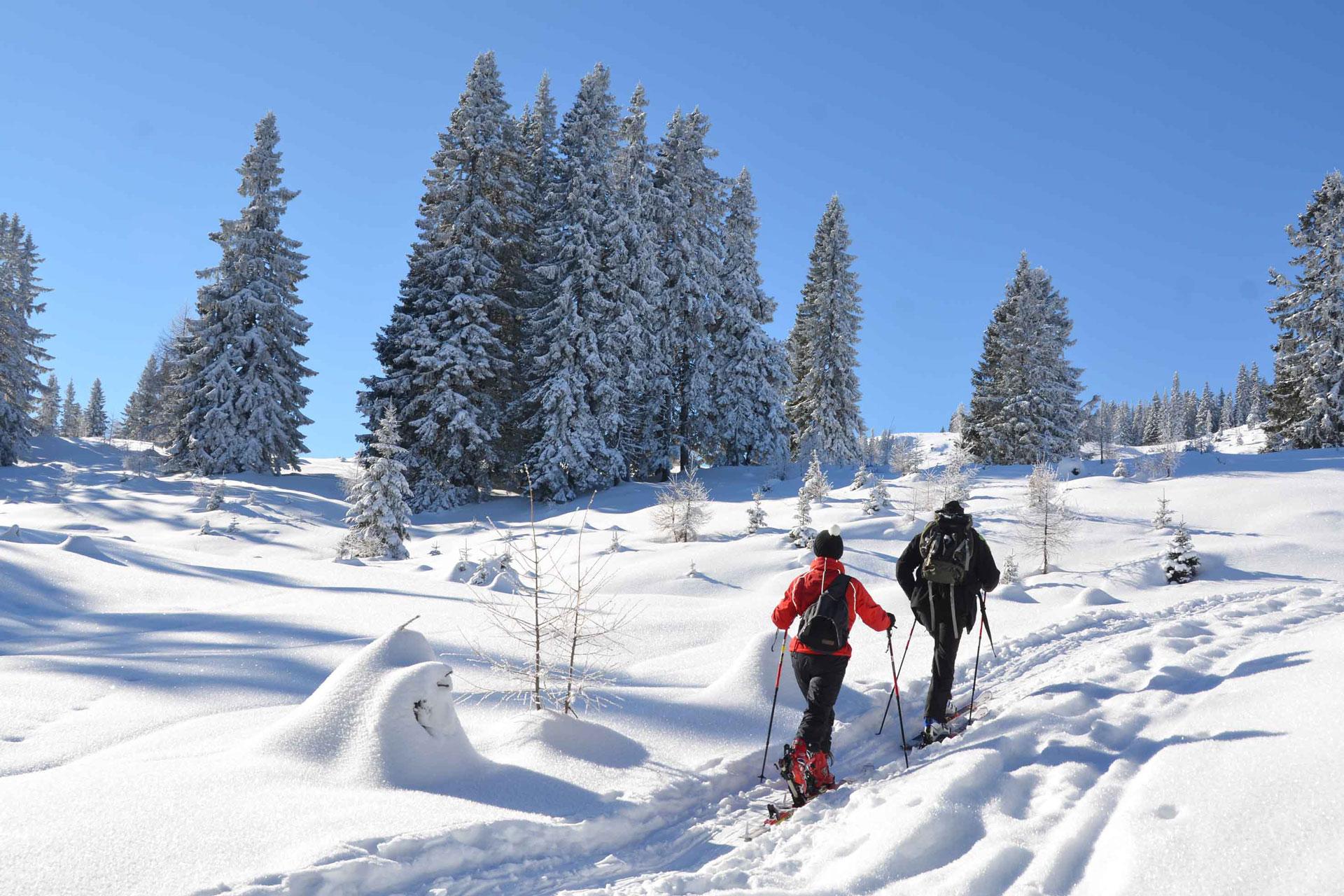 Scialpinismo_Rivista-Scimagazine-gennaio-2015-Dobratsch1